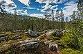 Rocky boreal forest landscape on Kivitunturi, Savukoski, Lapland, Finland, 2021 June.jpg