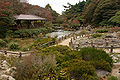Rokko alpine botanical garden20n4272.jpg