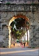 Roma-parco degli acquedotti04.jpg