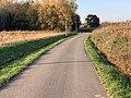 Route Marillat - Saint-Cyr-sur-Menthon (FR01) - 2020-10-31 - 3.jpg