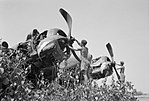 Royal Air Force Operations in the Far East, 1941-1945. CI662.jpg