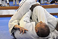 Royce Gracie Demonstration 03.jpg