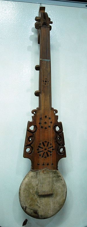 Pamiri rubab - Nine-stringed Pamiri rubab,from Khorugh, Badakhshan, Tajikistan. The instrument in this picture does not have the extension or horns that some other instruments with this name have above the hide soundboard.