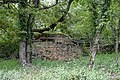 Rucher de la Combe à la Serpent - Corcelles-les-Monts 14.jpg