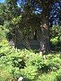Ruined chapel near Blaenau Dolwyddelan - geograph.org.uk - 203061.jpg