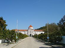 Runa Und Rebellin Wikipedia
