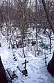 Russian Orthodox graveyard, Moscow (31931733221).jpg