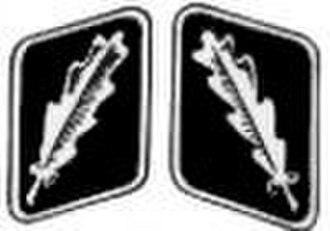 Oberstarzt - Image: SS Standartenfuehrer collar