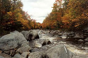 S Branch Carrabassett R at AT crossing.jpg