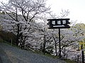 Sagano - panoramio.jpg
