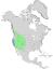 Salix exigua exigua & exigua hindsiana range map 0.png