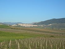 Sambuca di Sicilia.jpg