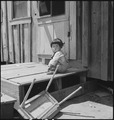 San Lorenzo, California. A farm youngster pictured two days before evacuation of persons of Japanes . . . - NARA - 537541.tif
