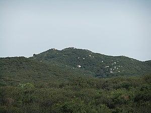 San Mateo Peak - San Mateo Peak seen from the northeast at Morgan Trail-head.
