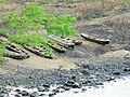 Sao Tome Blue Lagoon Canoes (16247122131).jpg
