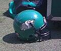 Saskatchewan Roughriders helmet.jpg