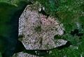 Satellite image of Noordoostpolder, Netherlands (5.78E 52.71N).png