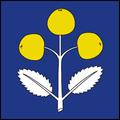 Schattdorf UR.png
