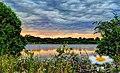 Schaumburg Township, IL, USA - panoramio (2).jpg
