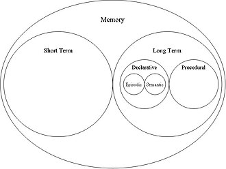Self-knowledge (psychology) - A basic schematic representation of memory showing the 'locations' of semantic and episodic memory.