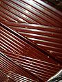 Schokolade in Siberpapier Image 0002 Lupus in Saxonia.jpg