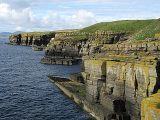 East Caithness Cliffs Protected area of cliffs and seas on the east coast of Caithness, Scotland
