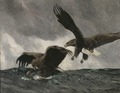 Sea Eagles (Bruno Liljefors) - Nationalmuseum - 18508.tif