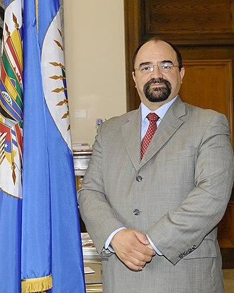 Emilio Álvarez Icaza - Image: Secretario Ejecutivo de la CIDH, Emilio Alvarez Icaza (8024785251)
