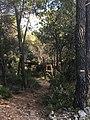 Sentier domaine Valcolombe 6.jpg