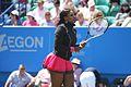 Serena Warm Up.jpg