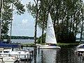 Setting Sail (37864464).jpeg