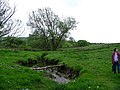 Shadforth Beck - geograph.org.uk - 432752.jpg