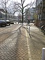 Shadows of trees in the streets of Amsterdam in spring of 2013.jpg