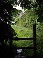 Shelter from the rain near stile - geograph.org.uk - 431168.jpg