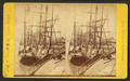 Shipping at New Orleans, La, by S. T. Blessing.png