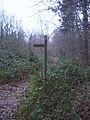 Signpost in Bixley Woods - geograph.org.uk - 905864.jpg