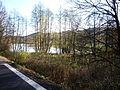 Silnice u hráze Simtanského rybníka.JPG