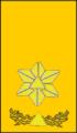 Sivilforsvaret-Distinksjon-Distriktssjef.png