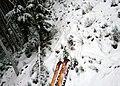 Ski tips (11138903724).jpg