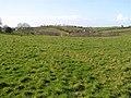 Skreen Townland - geograph.org.uk - 1190355.jpg