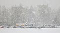 Snowfall in city.jpg