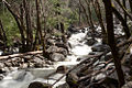 Snowmelt Stream near Bridalveil Falls (5637226088).jpg