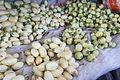 Solanum aethiopicum at market Arusha.JPG