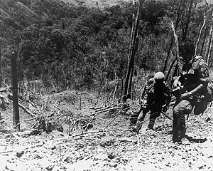 Battle of Hamburger Hill - U.S. Army Soldiers climb hill 937 at Dong Ap Bia after the battle, May 1969