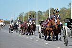 Solenidade cívico-militar em comemoração ao Dia do Exército e imposição da Ordem do Mérito Militar (25938065453).jpg