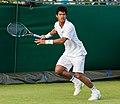 Somdev Devvarman 6, 2015 Wimbledon Qualifying - Diliff.jpg