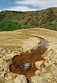 Spring Nature of Sardasht - March 2007 (14 8601100100 L600).jpg