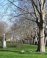 St Jamess Gardens, Butcher Row (geograph 2854451).jpg