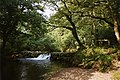 St Mellion, Pillaton Mill Weir - geograph.org.uk - 37195.jpg