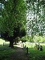 St Peter's churchyard - geograph.org.uk - 445389.jpg